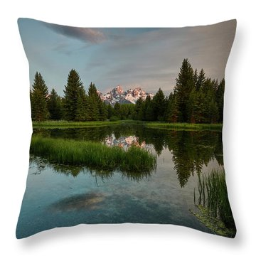 Schwabacher Morning Throw Pillow