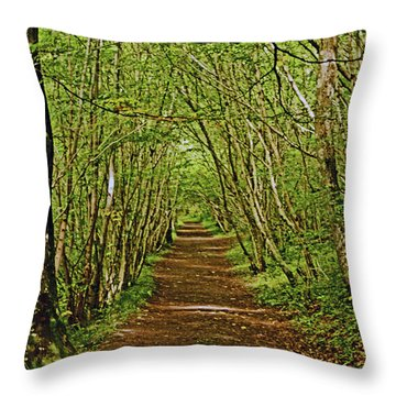 Scotland. Killiecrankie. Path Through The Trees. Throw Pillow