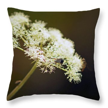 Scotland. Loch Rannoch. White Flowerhead. Throw Pillow