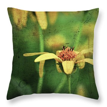 Throw Pillow featuring the photograph Scratched by Michelle Wermuth