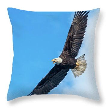 Screaming Eagle #2 Throw Pillow