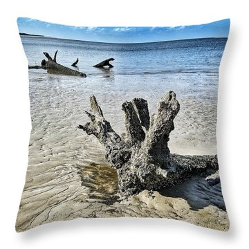 Sculpted By The Sea Throw Pillow