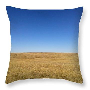 Sea Of Grass Throw Pillow