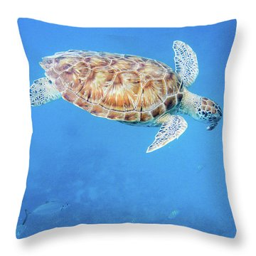 Sea Turtle And Fish Swimming Throw Pillow