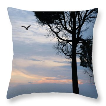 Seagull Sunset At Catawba Throw Pillow
