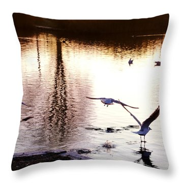 Seagulls In The Morning Throw Pillow
