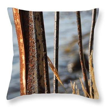 Seaview Through The Fence Throw Pillow