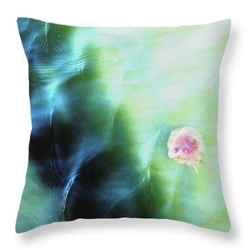 Seaworthy Throw Pillow