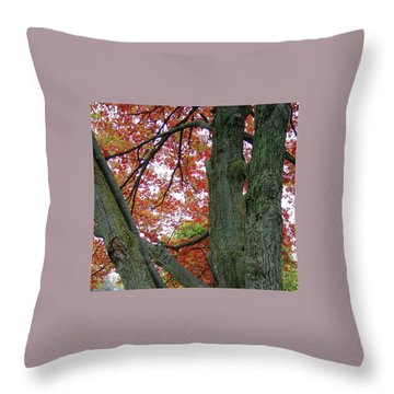 Seeing Autumn Throw Pillow