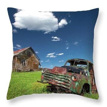 Seen Better Days Throw Pillow