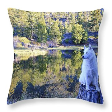Throw Pillow featuring the photograph Sekani Throne  by Sean Sarsfield