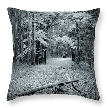 Selenium Trail  Throw Pillow