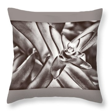 Throw Pillow featuring the photograph Sensual Succulent I by Leda Robertson