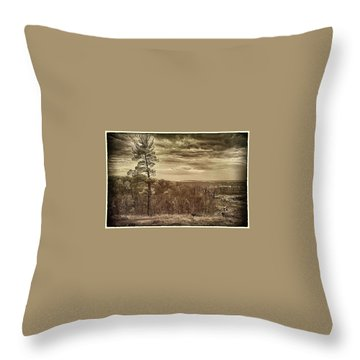 Sepia Sunset Throw Pillow