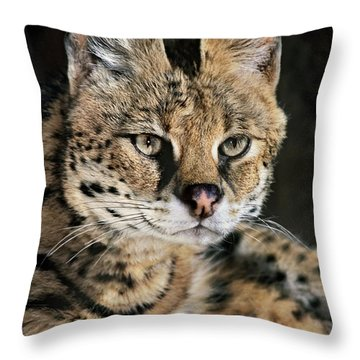 Serval Portrait Wildlife Rescue Throw Pillow