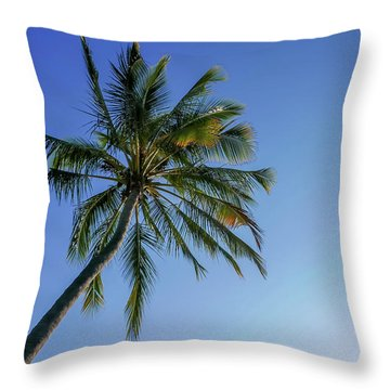 Shades Of Blue And A Palm Tree Throw Pillow