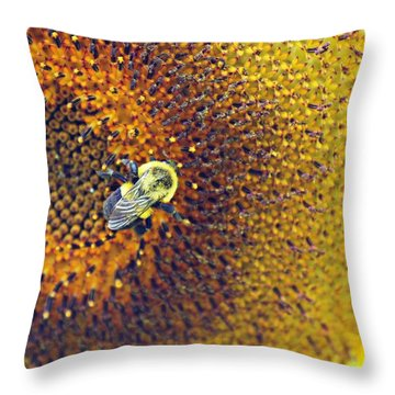 Throw Pillow featuring the photograph Shades Of Sun by Candice Trimble