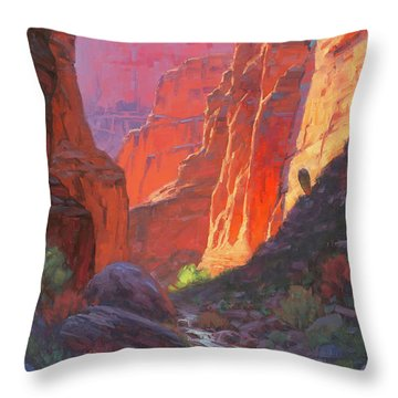 Canyon Throw Pillows