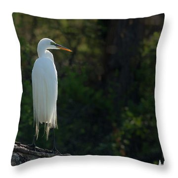 Shadow Heron Throw Pillow