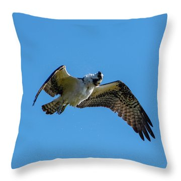 Shake It Off 2 Throw Pillow