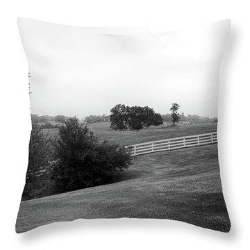 Shaker Field Throw Pillow