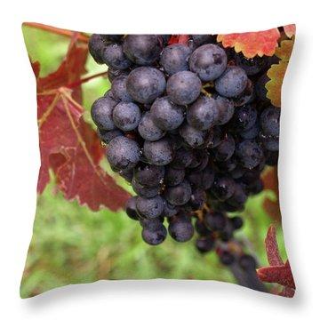 Shalestone - 1 Throw Pillow