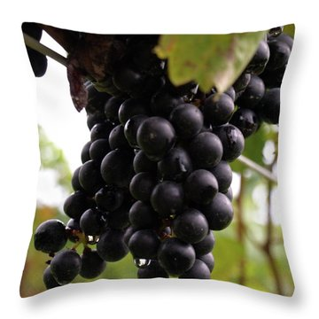 Shalestone - 10 Throw Pillow