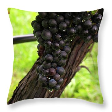 Shalestone - 11 Throw Pillow