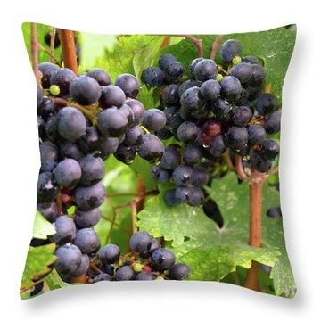 Shalestone - 13 Throw Pillow