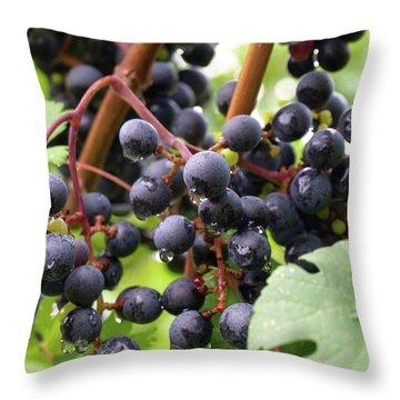 Shalestone - 15 Throw Pillow