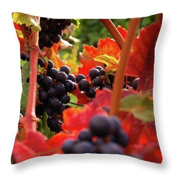 Shalestone - 2 Throw Pillow