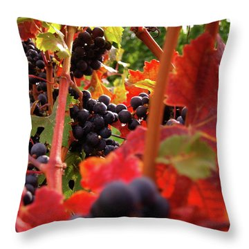 Shalestone - 3 Throw Pillow