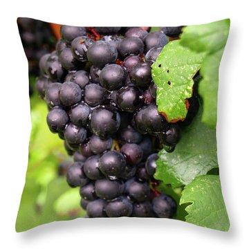 Shalestone - 6 Throw Pillow