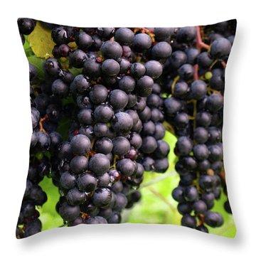 Shalestone - 7 Throw Pillow