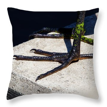 Sharp Perspective  Throw Pillow