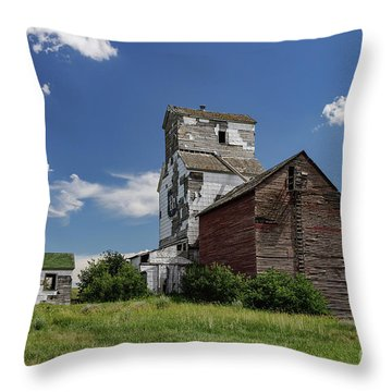 Sharples Elevator Throw Pillow