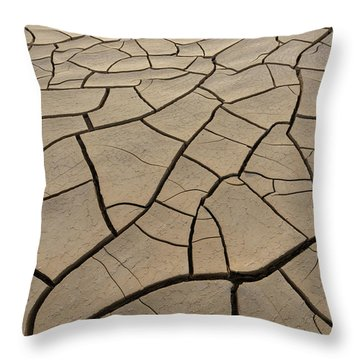 Shattered Grounds Throw Pillow