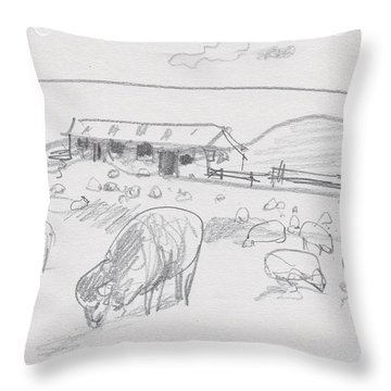Sheep On Chatham Island, New Zealand Throw Pillow