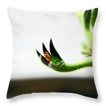 Sheffield. The Botanical Gardens Pavillions Throw Pillow