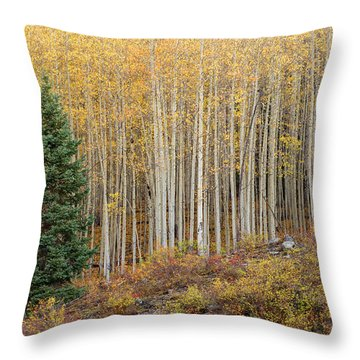 Shimmering Aspens Throw Pillow