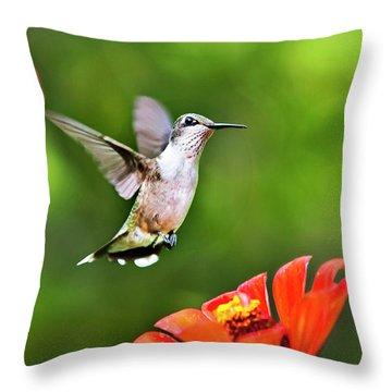 Shimmering Breeze Hummingbird Throw Pillow