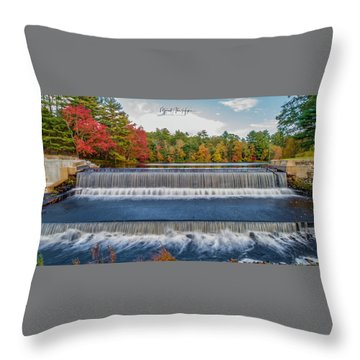Throw Pillow featuring the photograph Shining Bright  by Michael Hughes
