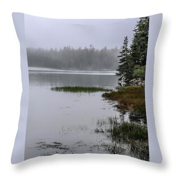 Ship Harbor Nature Trail, Acadia National Park Throw Pillow