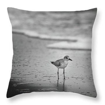 Shore Bird Throw Pillow