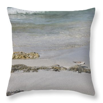 Shorebird Throw Pillow