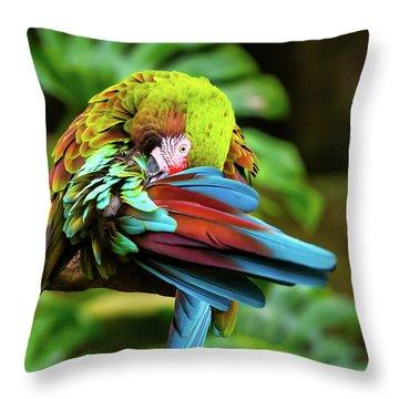 Shy Parrot Throw Pillow