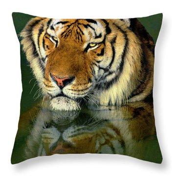 Siberian Tiger Reflection Wildlife Rescue Throw Pillow