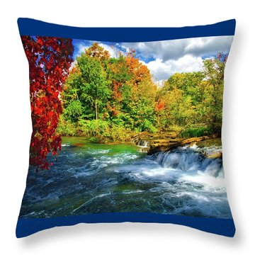 Throw Pillow featuring the photograph Sidelined Beauty by Lynn Bauer