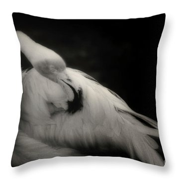Siesta Mingo Throw Pillow