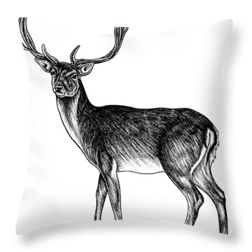 Sika Deer Stag - Ink Illustration Throw Pillow